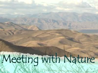 Meeting With Nature